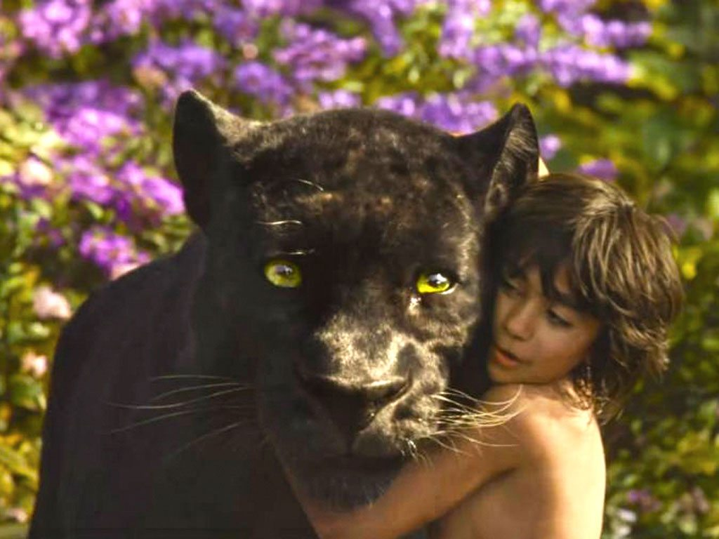 Where in India to See Your Favourite Jungle Book Characters 4