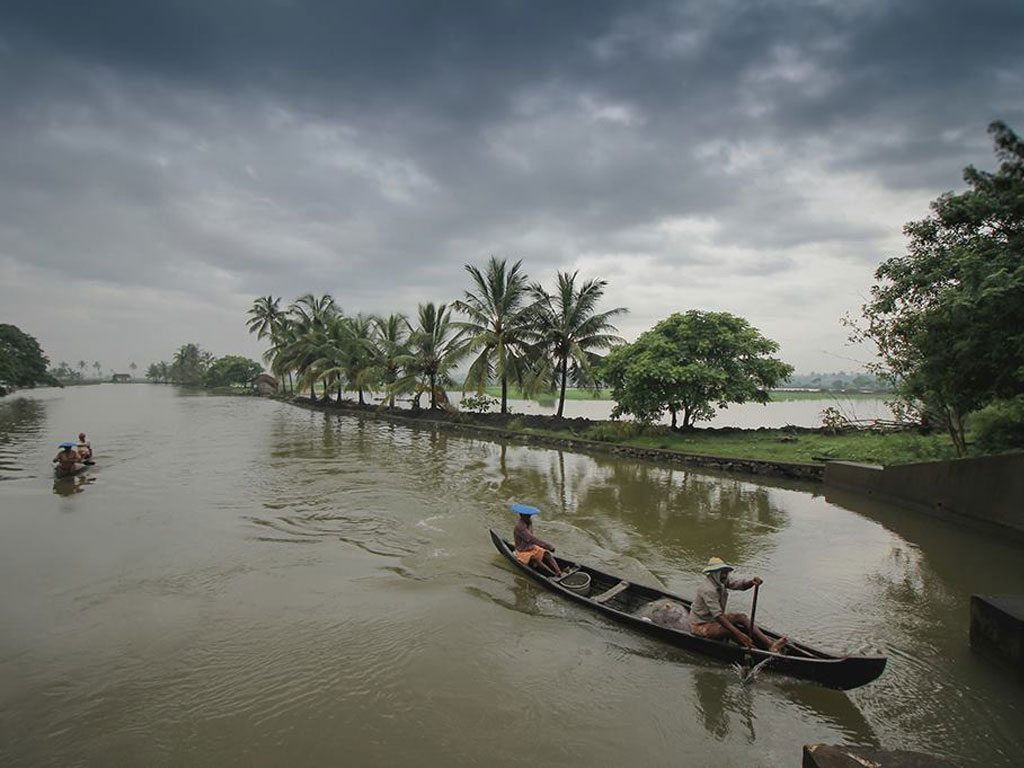coconut trees and canoes, photo by Sreejith K.S.