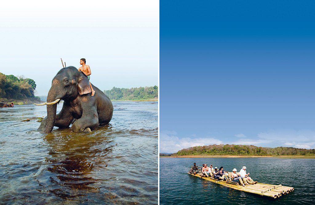 Spotting wild elephants (L) in a dense forest like Periyar is exhilarating, but distance must be kept. [Photo: Kurien Yohannan/ National Geographic Stock]; Visitors can choose to drift away on a slow bamboo raft ride (R) on Periyar Lake. [Photo: Robert Harding/ Indiapicture]