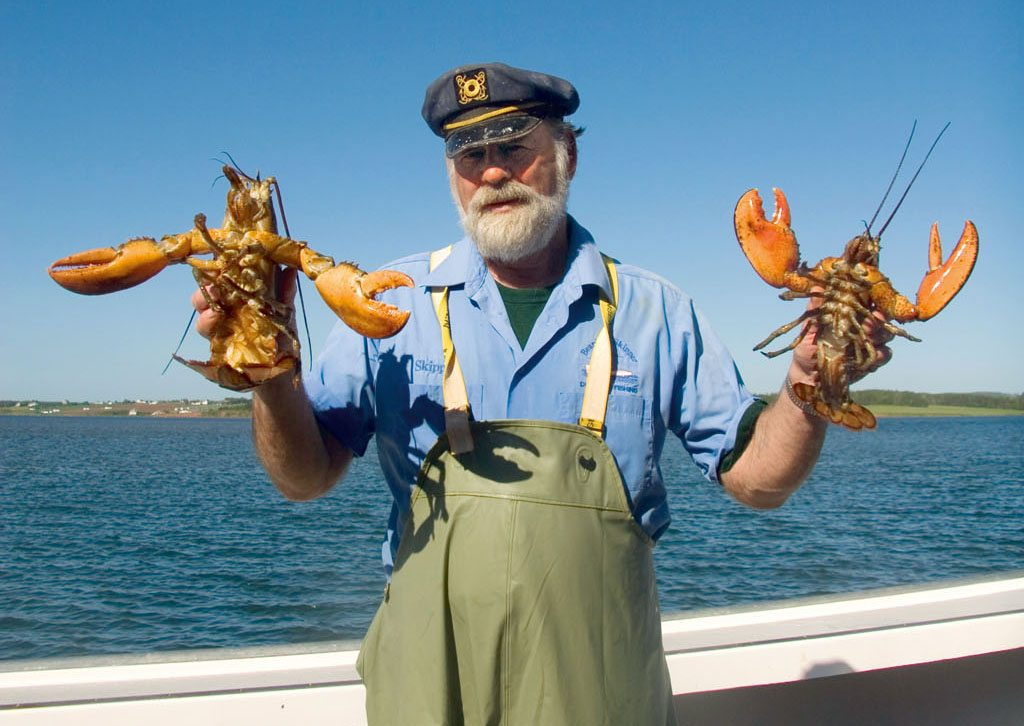 catching lobsters