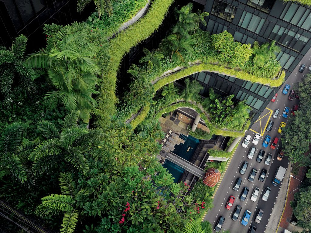 "In Singapore, which aims to be a ""city in a garden,"" greenery cascading off a luxury hotel soothes a guest in a balcony pool—and people on the street below. ""A concrete jungle destroys the human spirit,"" former Prime Minister Lee Kuan Yew once said."