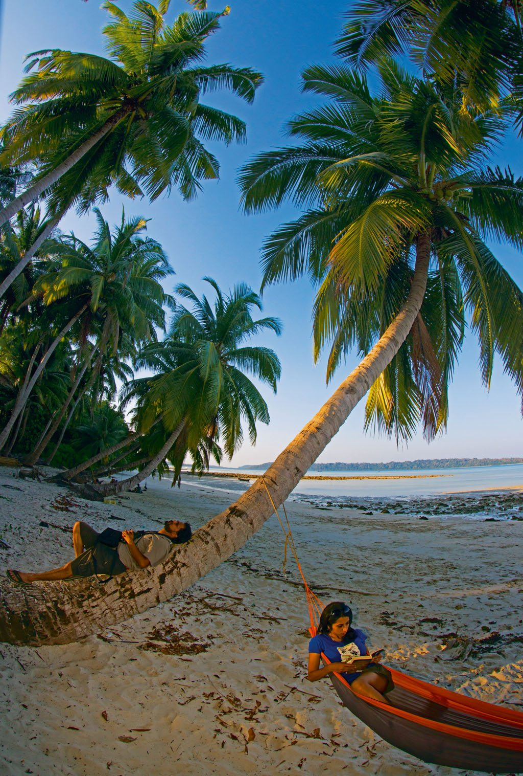Reading Andaman Nicobar Islands