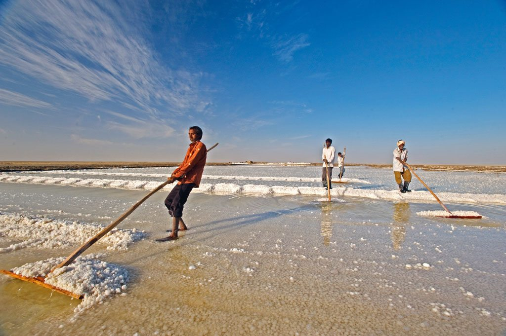 Salt Panning Gujarat Little Rann