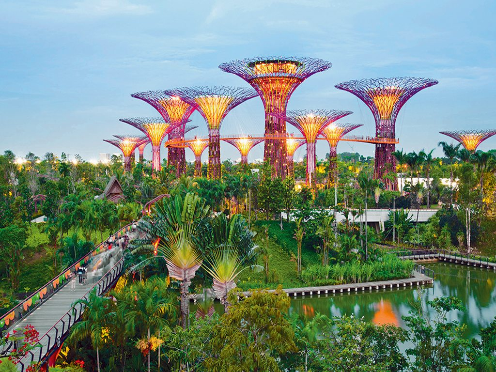 Supertree Grove is a unique architectural aspect of Gardens by the Bay. The huge canopies provide shade during the day and come to life at night with sound and light shows. Photo: John Harper/Corbis/Imagelibrary