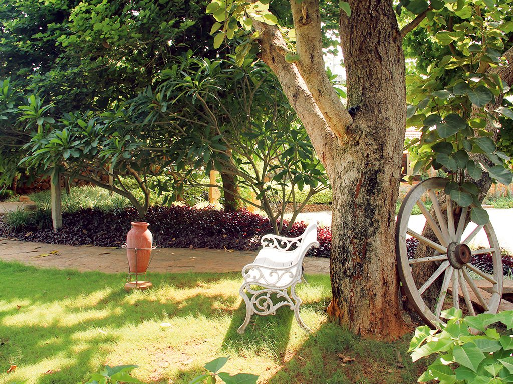 Angana—The Country Inn, Photo: Supriya Sehgal