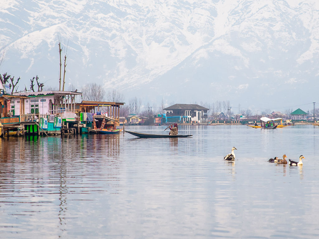 A serene winter morning on Dal Lake, Srinagar, Jammu & Kashmir.