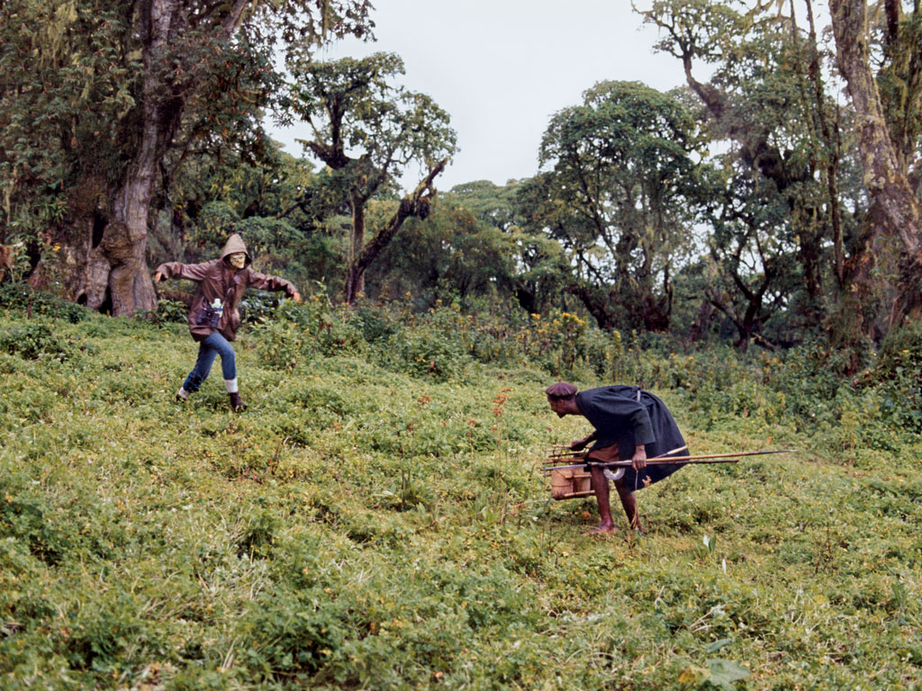 Fossey, wearing a skull mask in this photo shot in 1969, took advantage of herders' beliefs in sorcery to try to frighten them and their cattle from the forest. She also demolished traps, beat poachers with stinging nettles, and raided their camps. Photo Courtesy: Bob Campbell Papers, Special and Area Studies Collections, George A. Smathers Libraries, University of Florida